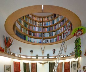 Dome Shaped Bookshelf by Travis Price Architects