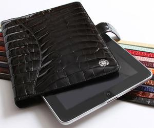 Domenico Vacca Makes the iPad More Fashionable