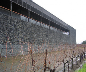 Dominus Winery by Herzog and De Meuron Architects