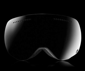 Dragon APX Polarized 2012 Goggles