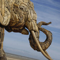 Driftwood Elephant Sculptures by Andries Botha