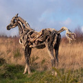 Driftwood Horse Sculptures by Heather Jansch