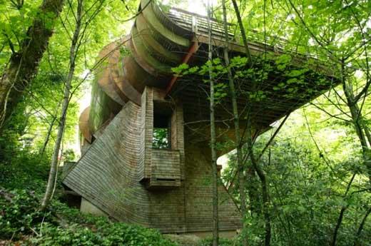 Eco Friendly House By Robert Oshatz Harvey Architects