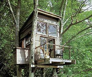 Eco-Friendly Treehouses by Baumraum
