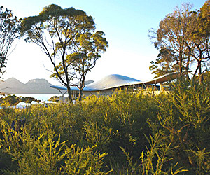 Eco-Resort Shaped Like a Manta Ray