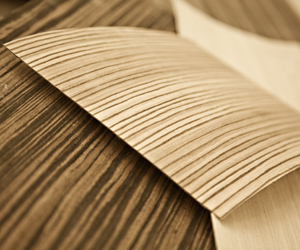 Exotic Wood Veneer