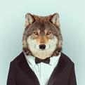 Fashion Zoo Animals by Yago Partal
