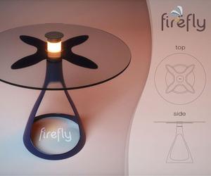 Firefly by Vuk Dragovic