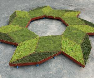 Fractal Garden by Murry Legge