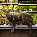 Garden Fresh by Agan Harahap