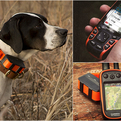 Garmin Astro | Dog Tracking System
