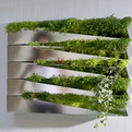 Grass Mirror by h2o architectes