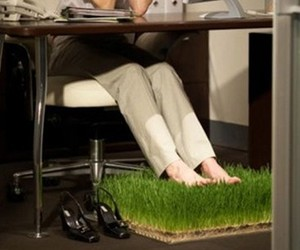 Great Office Carpet