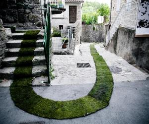 Grass Carpet Running Through French Village