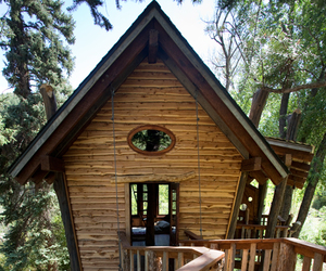 Green Line Architects Tree House