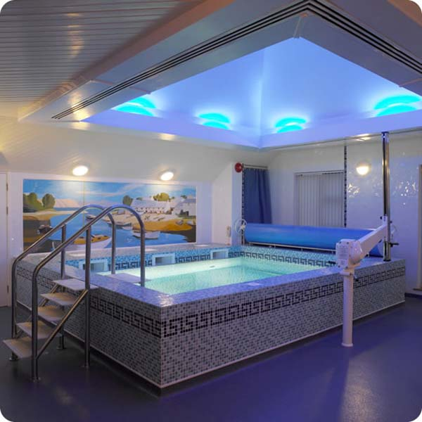 Luxury Home Indoor Swimming Pools: Home Indoor Pool