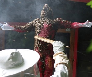 Honeycomb Sculptures by Tomáš Libertíny