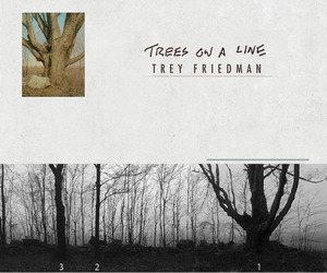 Incredibly Realistic Paintings of 170 Trees