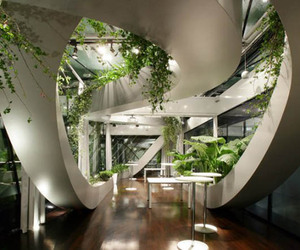 Indoor Garden Design