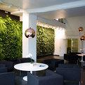 Indoor Vertical Garden - Green Fortune