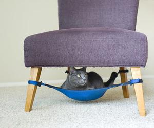 Ingenious Hammock-Like Cat Crib