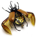 Insects as Steampunk Art