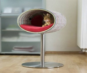 Interesting Unique Cat Bed Accessory
