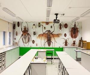 Digitally printed wallpaper ideas