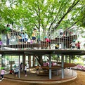 Kindergarten Designed Around Japanese Tree