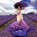 Kirsty Mitchell's Wonderland