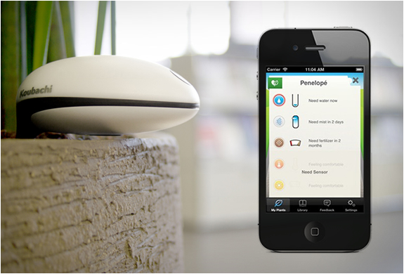 Koubachi wi fi plant sensor - Monitor your indoor plants with the koubashi wi fi sensor ...