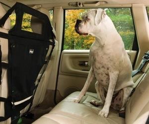 Kurgo Backseat Pet Barrier