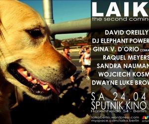 Laika Welcome