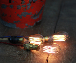 Large Squirrel Cage Carbon Filament Light Bulb