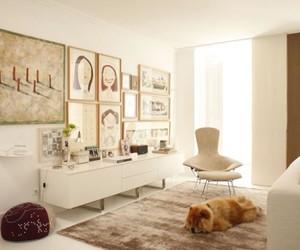 Ligia Casanova's Interior