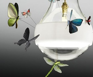 Like Moths To A Flame. Butterfly Pendant Lamps with Insects.