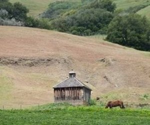 Little Farm Building in Marin County