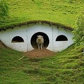 """Lord Of The Rings"" Abandoned Hobbiton is Now Home to Sheep"