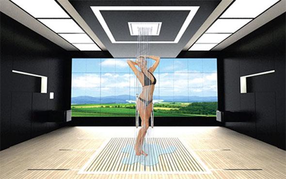 luxury multi-function bathroom