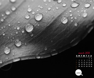 March Monthly Calendar by CAFElab is OUT!
