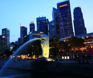 Mascots Of Singapura