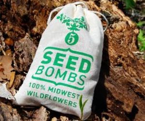 Midwest Wildflower Seed Bombs