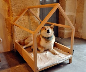 Minimal Wood Dog Bed Design