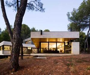 Minimalist Wooden No Polution  Home