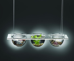 Mono Suspended Glass Bowl Displays