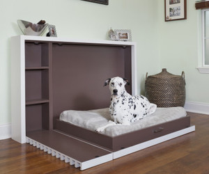 Murphy Dog Bed