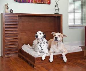 Murphy Dog Beds