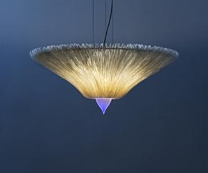 MUSHROOM by Christopher Moulder