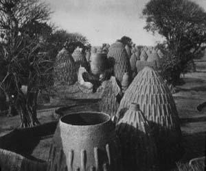 Musqum : Ethnic Mud House Design in Cameroon