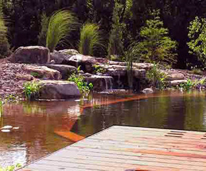 Natural Swimming Pools by Total Habitat